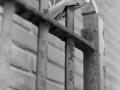 Blik op hek